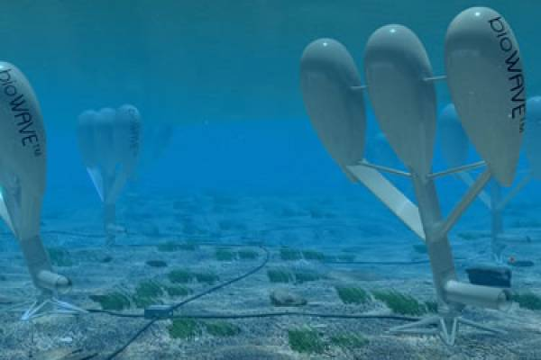An ingenious method of imitating marine species is being used by an Australian company to extract renewable energy from the waves. Credit: Biopower Systems.