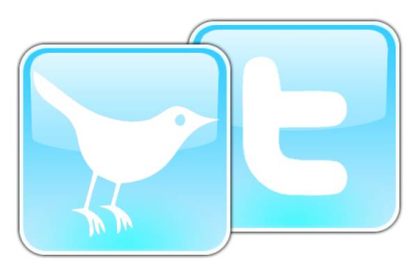 How to use Twitter with your blog