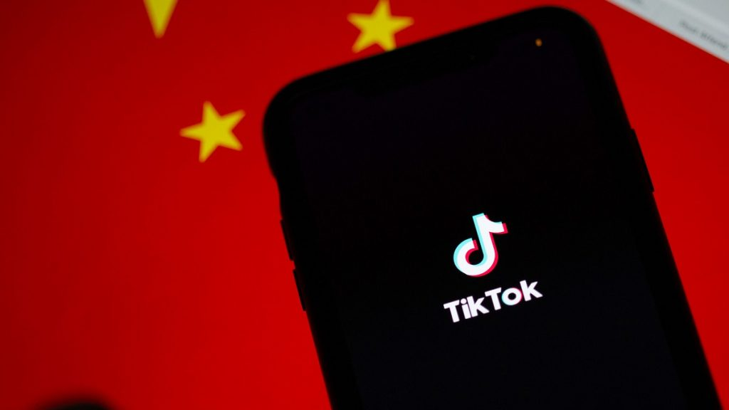 TikTok Biometric Identifiers